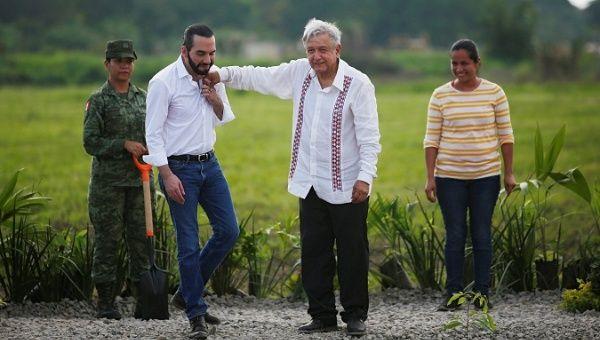 El Salvador's President Nayib Bukele and Mexico's President Andres Manuel Lopez Obrador plant trees in Puerto de Chiapas, Chiapas, Mexico, June 20, 2019.